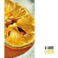 FORGOTTEN SILENCE - La Grande Bouffe LP