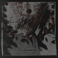 FLESHWORLD - Like We're All Equal Again CD (digisleeve)
