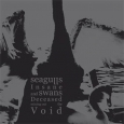 SEAGULLS INSANE AND SWANS... - s/t CD
