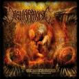 DISHARMONIC - The Creature-Artificial Ignorance CD