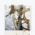 PSYCHOFAGIST - Songs Of Faint And Distortion CD (digipak)
