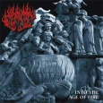 FLAME - Into the Age of Fire CD