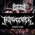 FETAL DISGORGE - Rape, Degrade, Mutilate CD