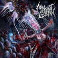 MAGGOT COLONY - Perpetuating The Viral Infestation CD
