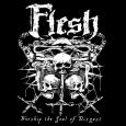 FLESH - Worship The Soul Of Disgust CD